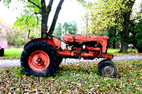 Kenny's antique tractors, Romney